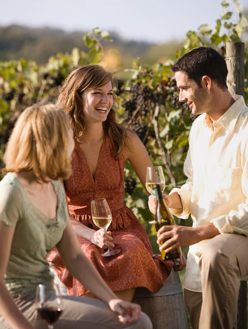 Informal Outdoor Wine Tasting at Vineyard, Rocheport, Missouri