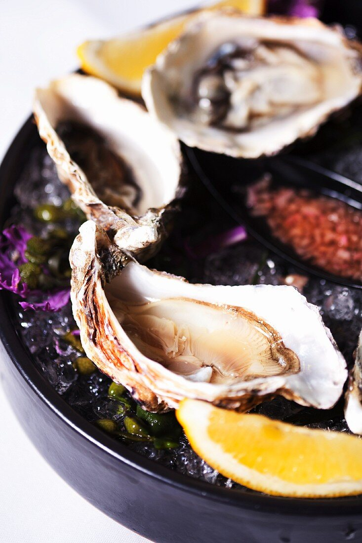 Fresh oysters with orange wedges