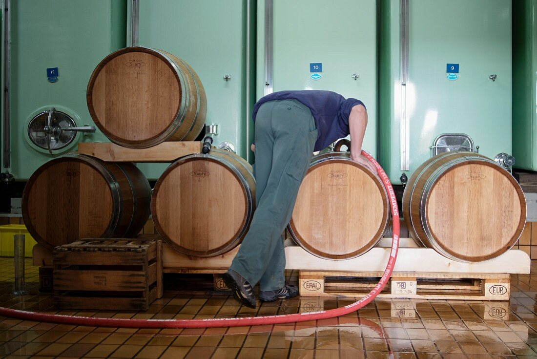 A winemaker filling wine into a small wooden barrel, lower Aaretal
