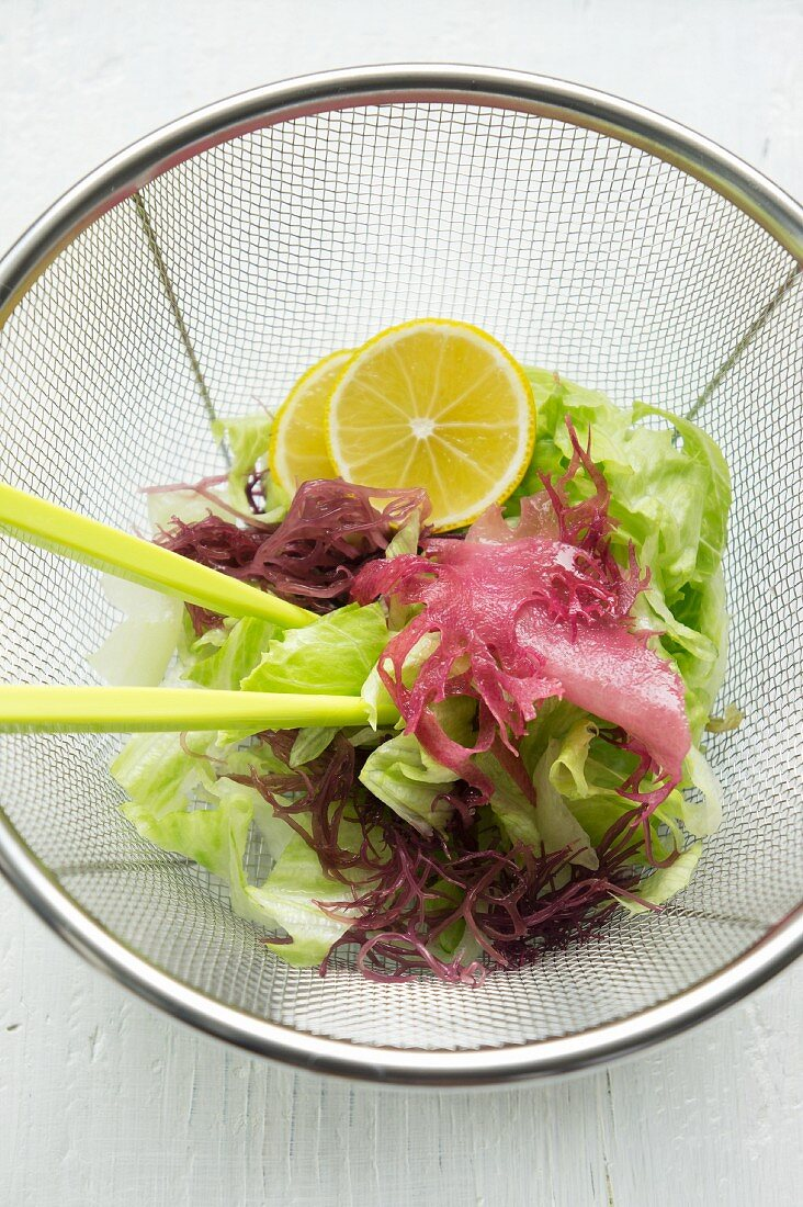 Mixed leaf salad with red seaweed and yuzu slices