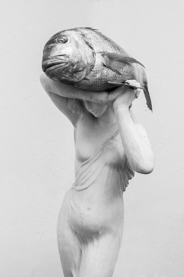 A raw porgy being held by a female statue (black and white image)