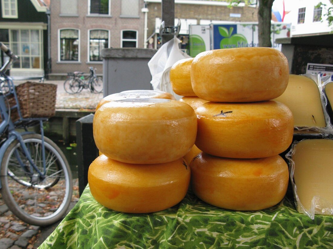 Wheels of Gouda cheese at a market