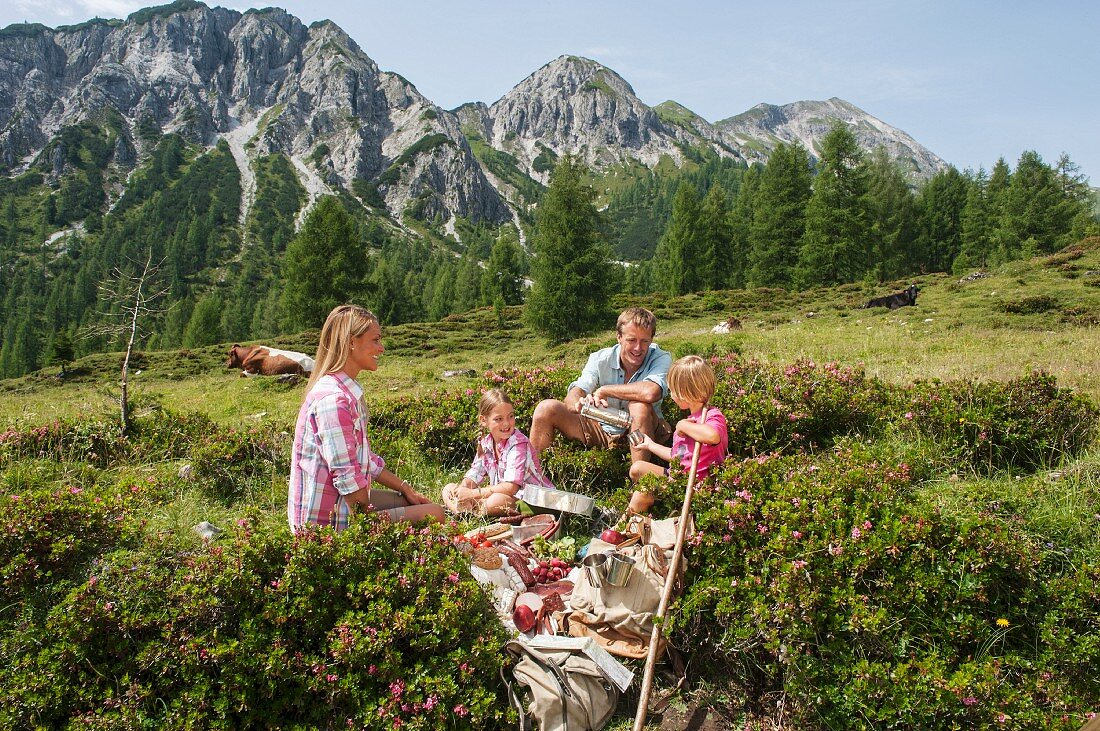 A family having a picnic against an idyllic mountain landscape