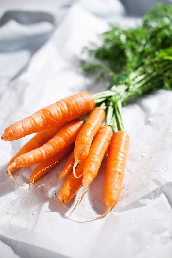 Fresh carrots on paper