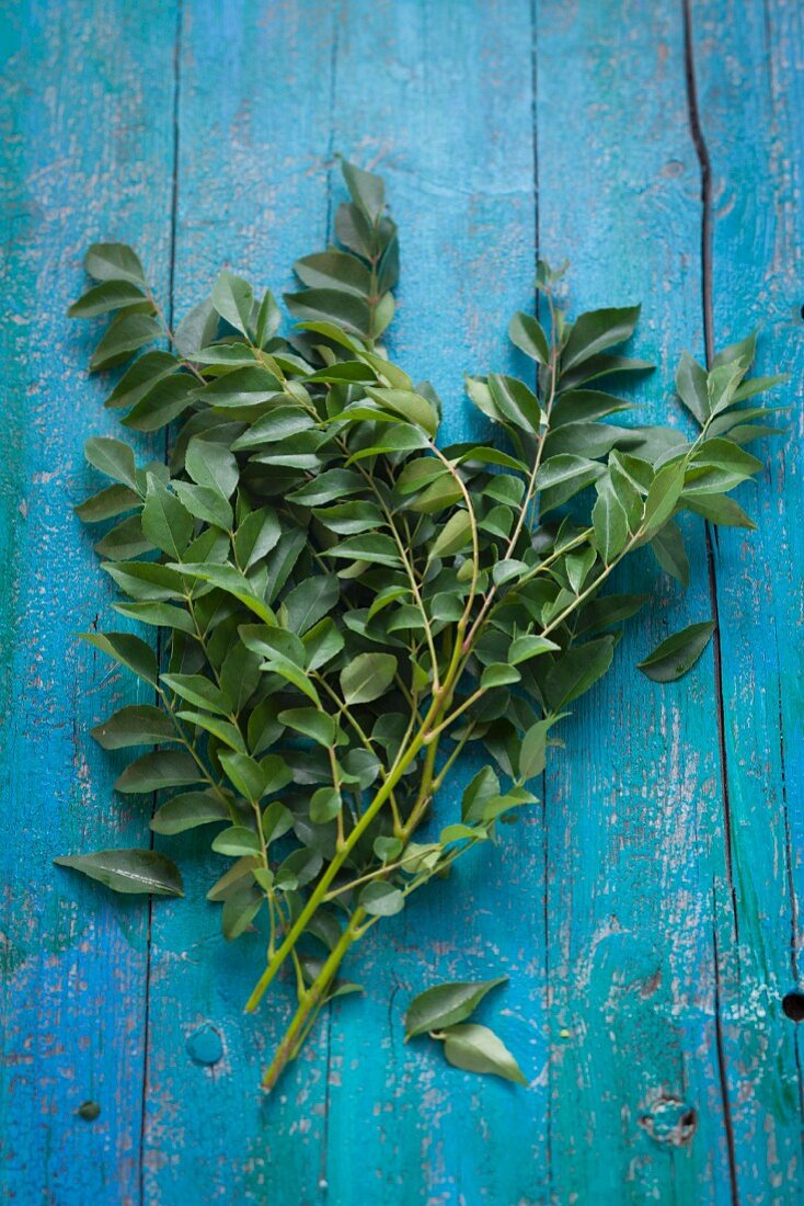 Curry leaves on a rustic wooden table