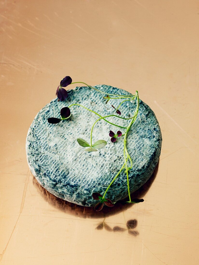 Soft goat's cheese