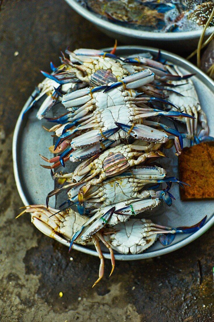 Fresh blue crabs at a market in Saigon (Vietnam)