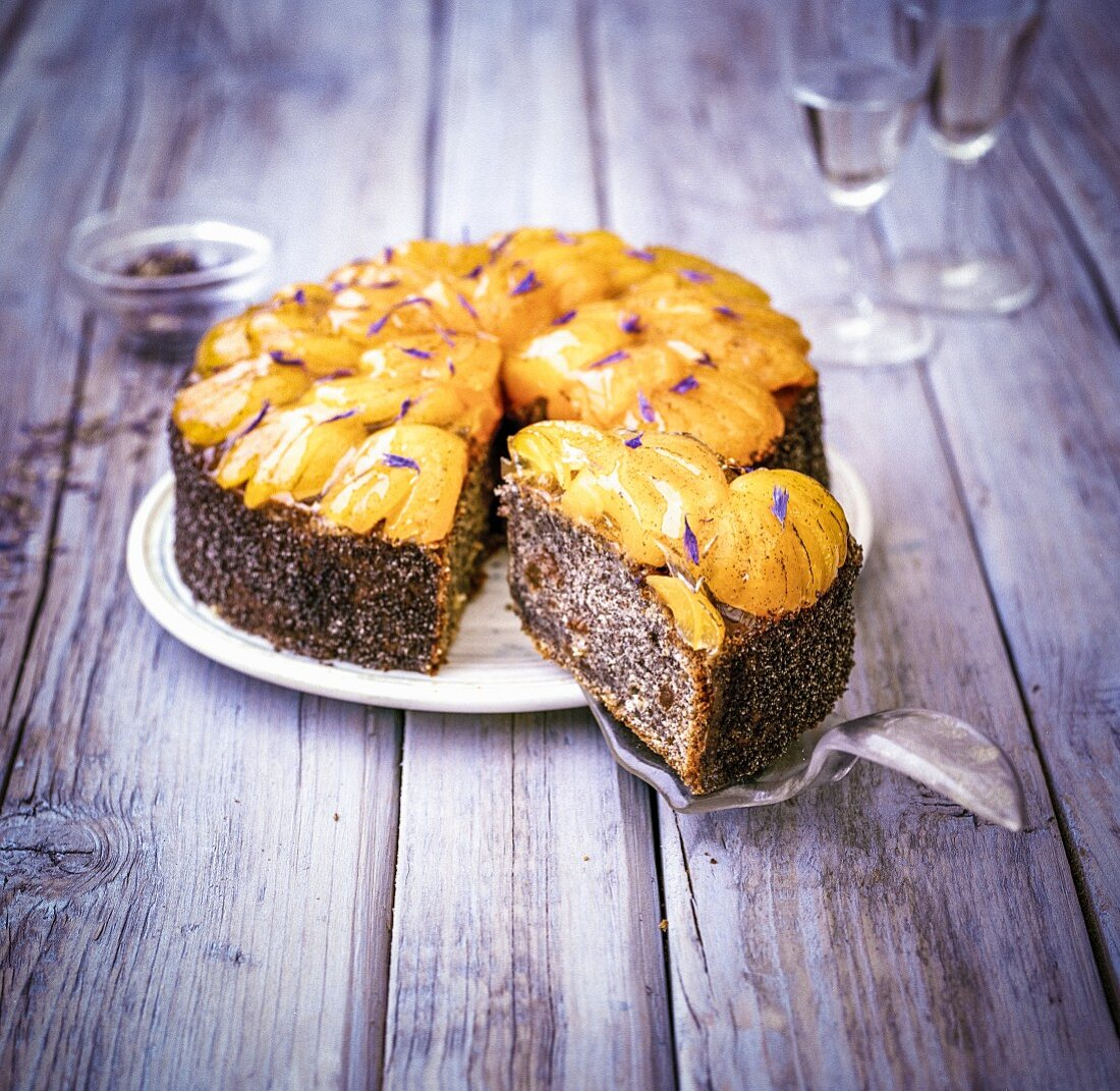 Polish poppy seed cake with apricots and cornflowers