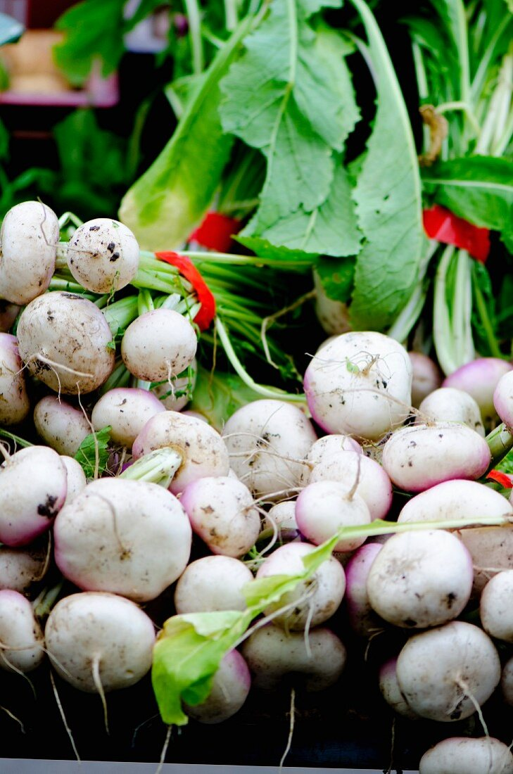 Bunches of May turnips on a market stand