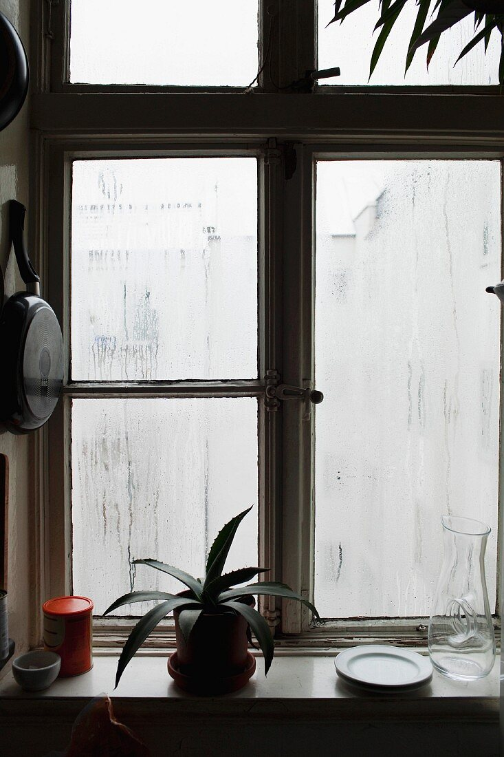 A steamed kitchen window with a pot plant and crockery on a window sill