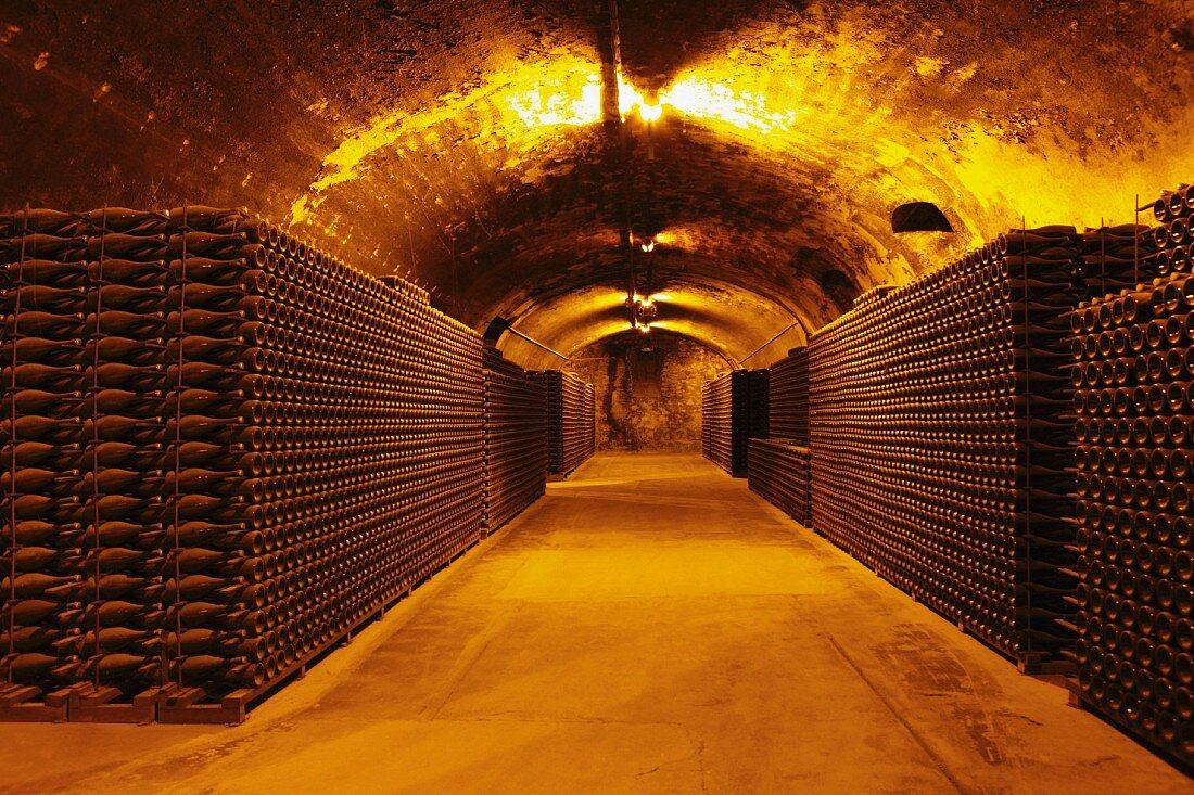 Wine stored in a wine cellar