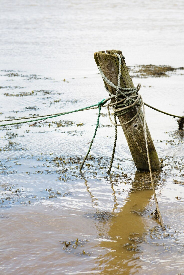 Wooden mooring post with ropes