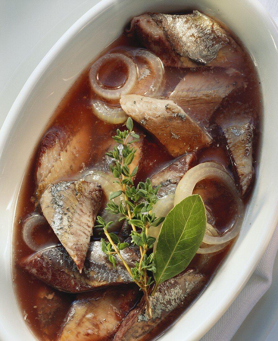 Maatjes herring in red wine marinade