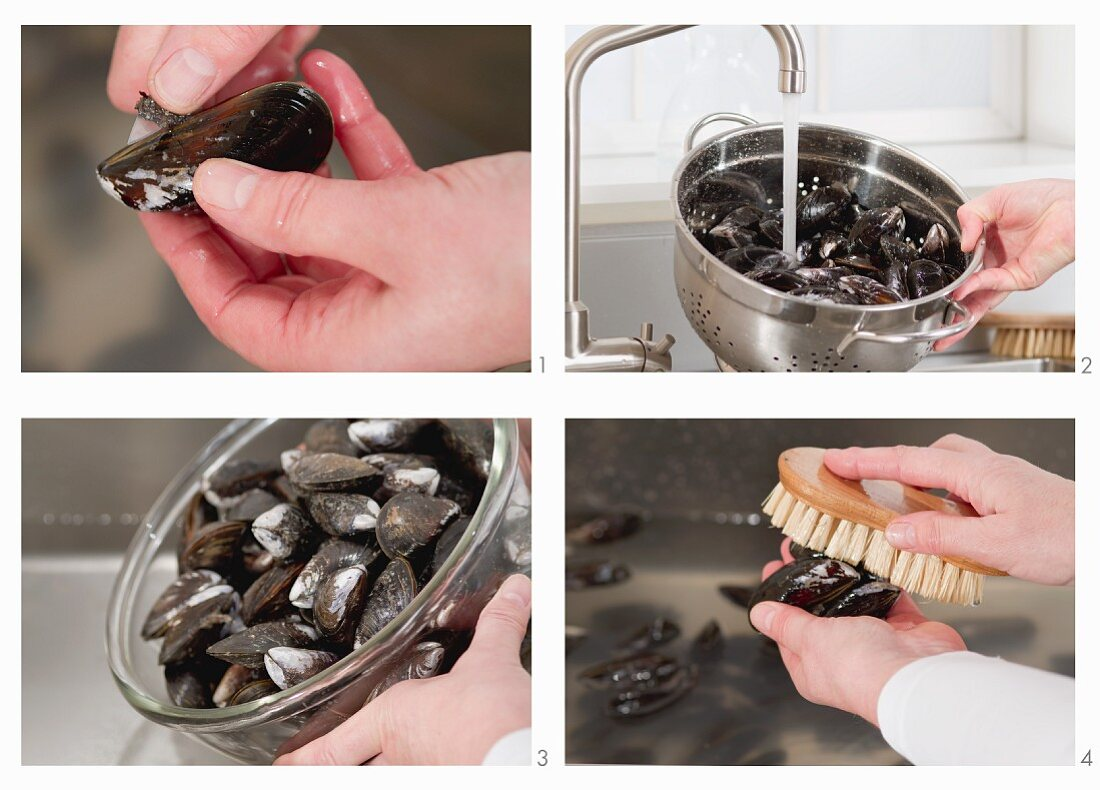 Cleaning mussels