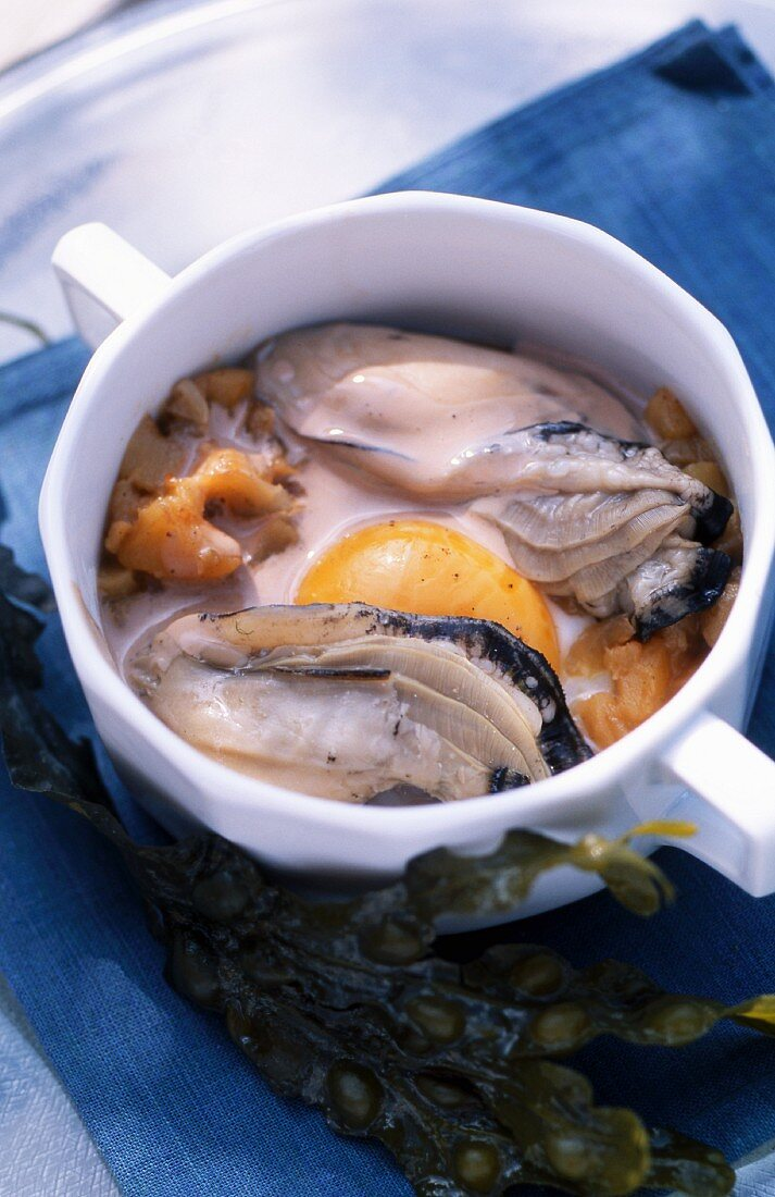 Oysters with egg (Brittany, France)