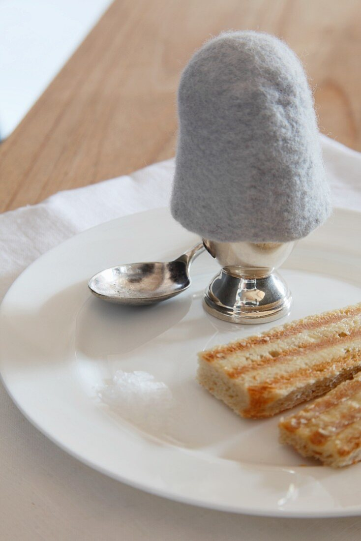 Boiled egg with felt egg warmer and toast