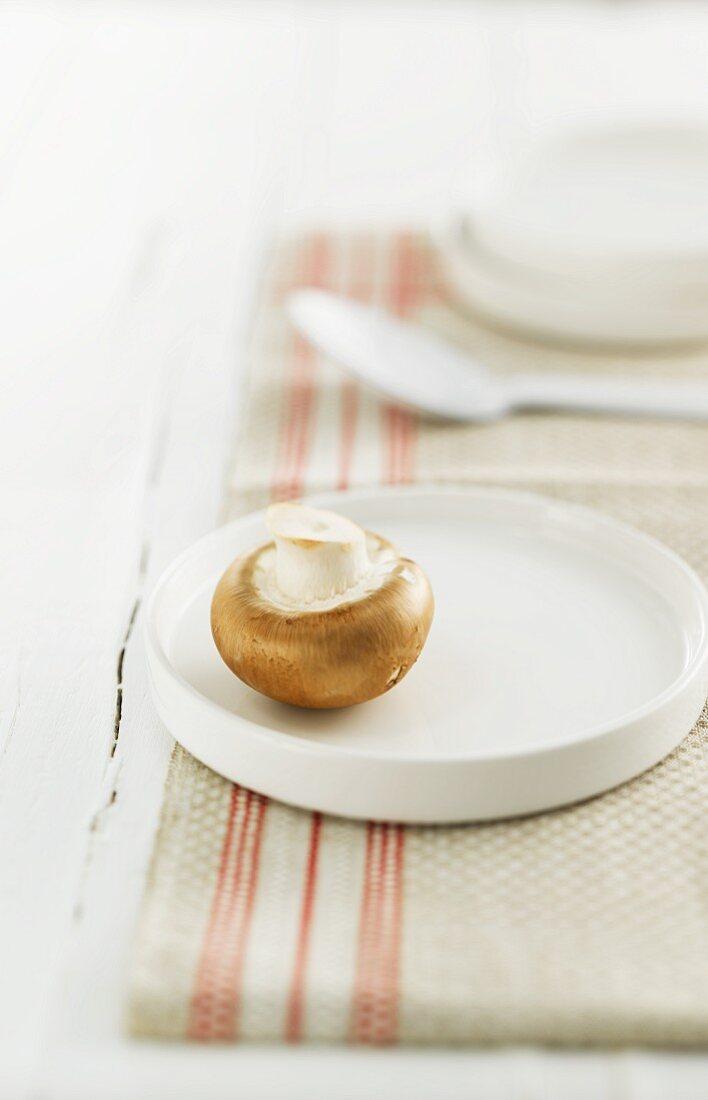 A brown mushroom on a plate