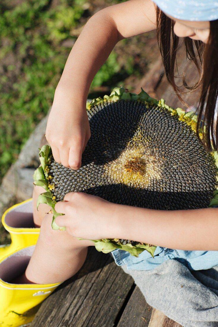 Girl seated on garden bench eating sunflower seeds