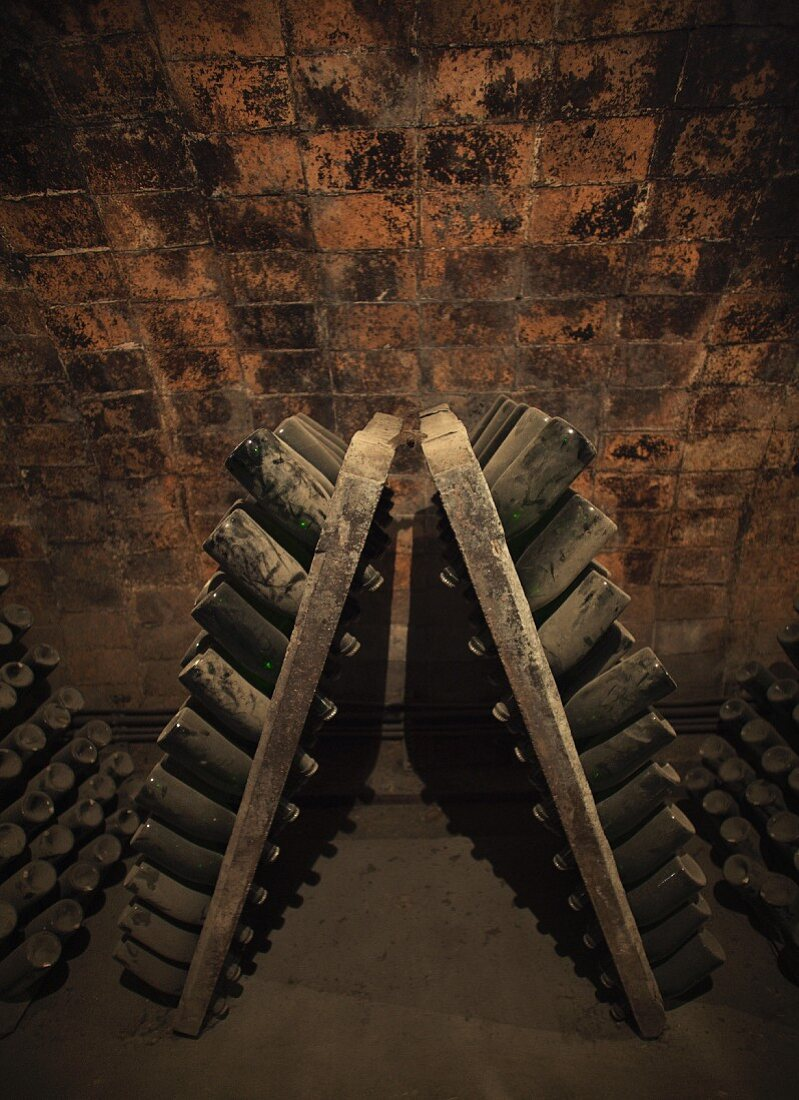 Dusty bottles in wine cellar