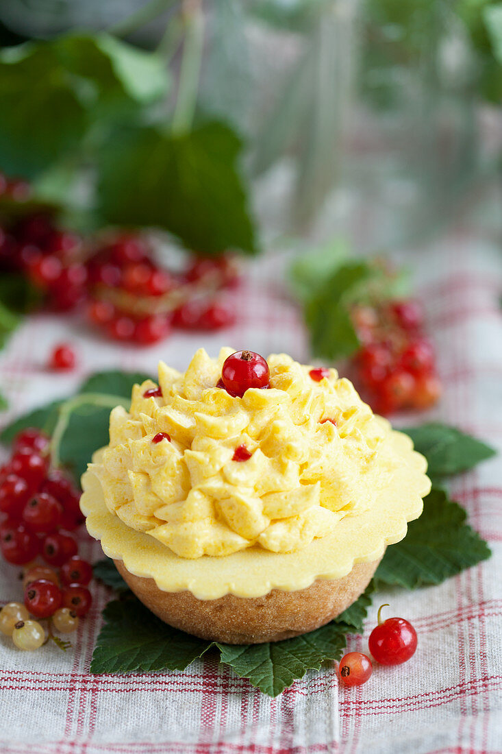 A cream tart with redcurrants