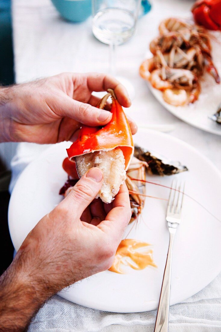Man removing the meat from a lobster claw