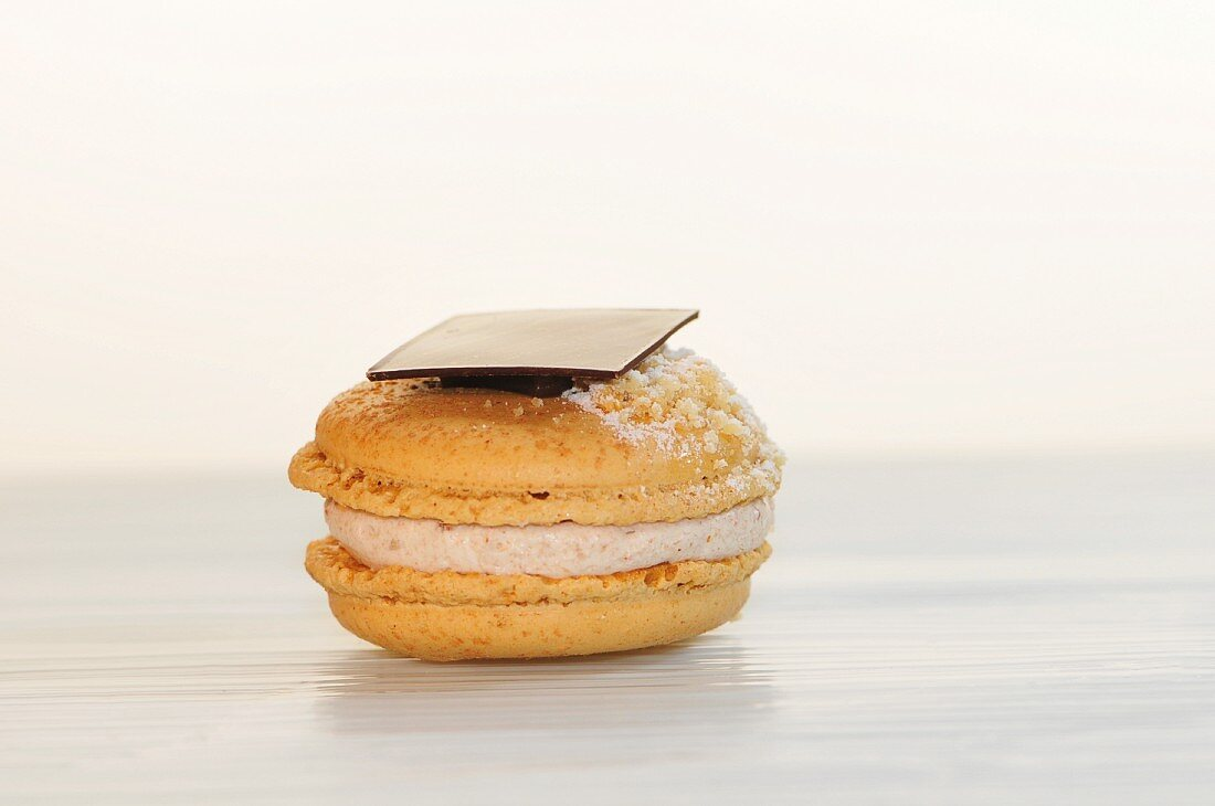 A slice of chocolate on a macaroon