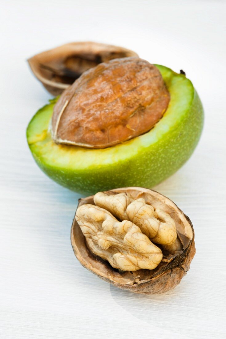 Two walnuts, half opened, with a green shell
