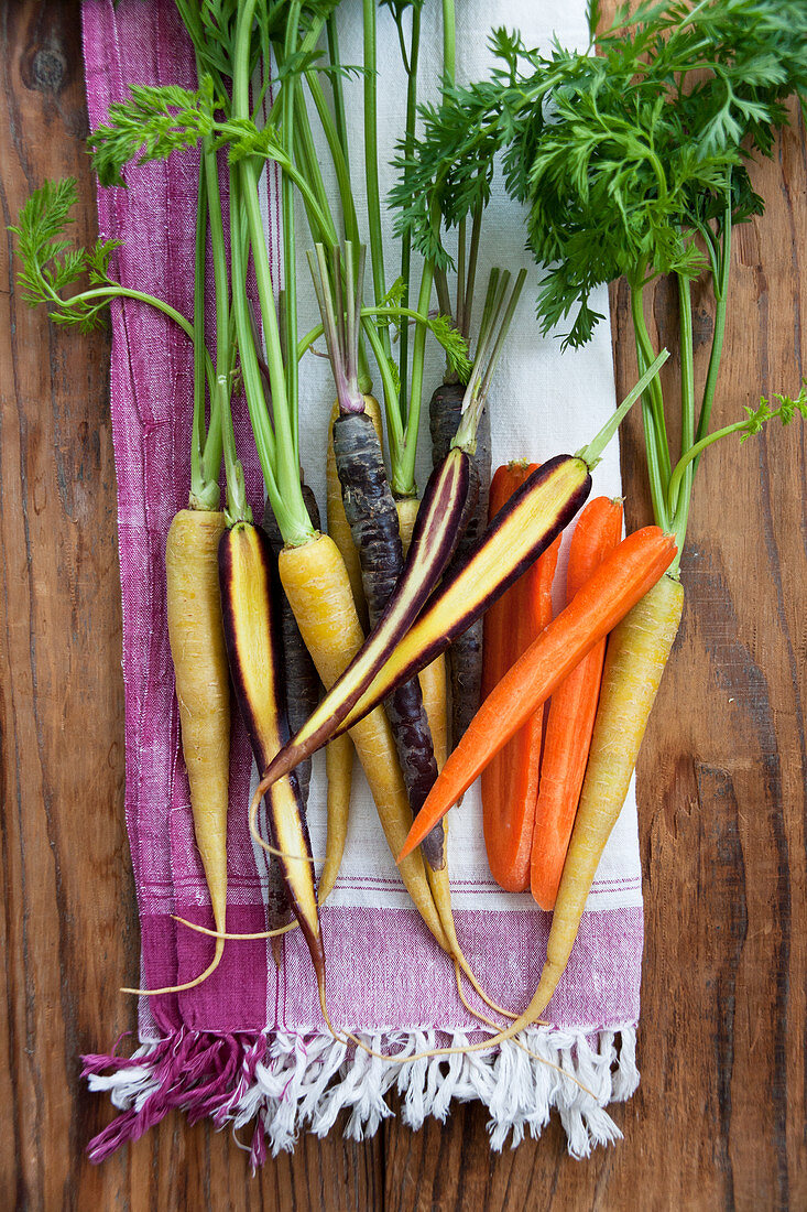 Yellow carrots (Pfälzer Loberricher), purple carroty (anthonia) and orange carrots