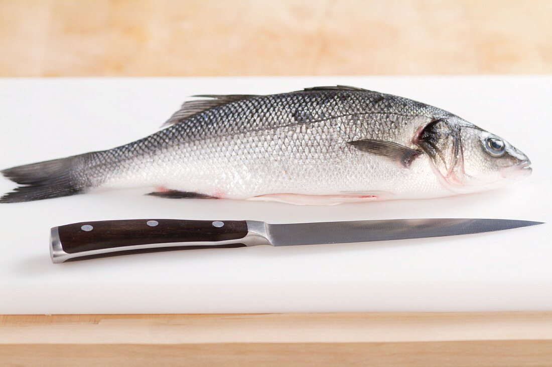 A bass and a filleting knife
