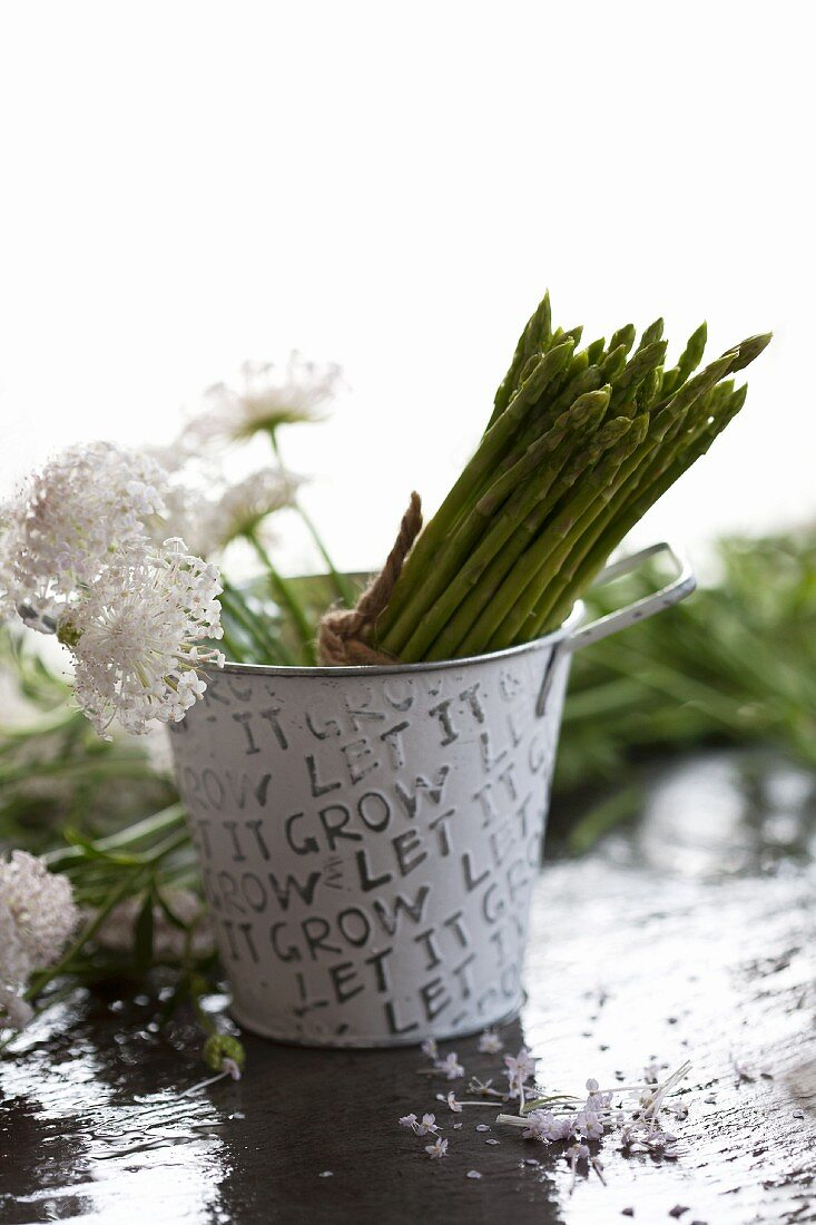 Thai asparagus and pincushion flowers in a small bucket