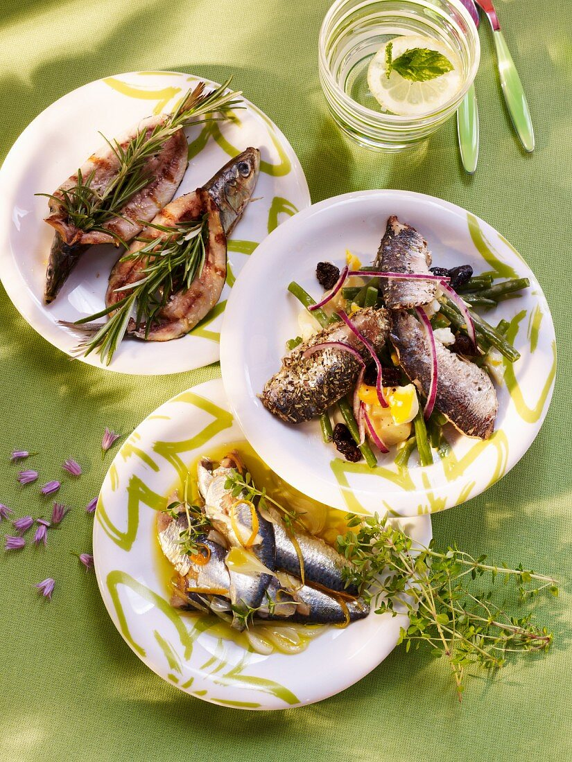 Various sardine dishes