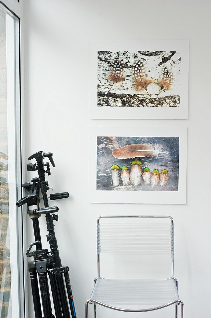 A camera tripod and a transparent wire chair under two pictures of feathers