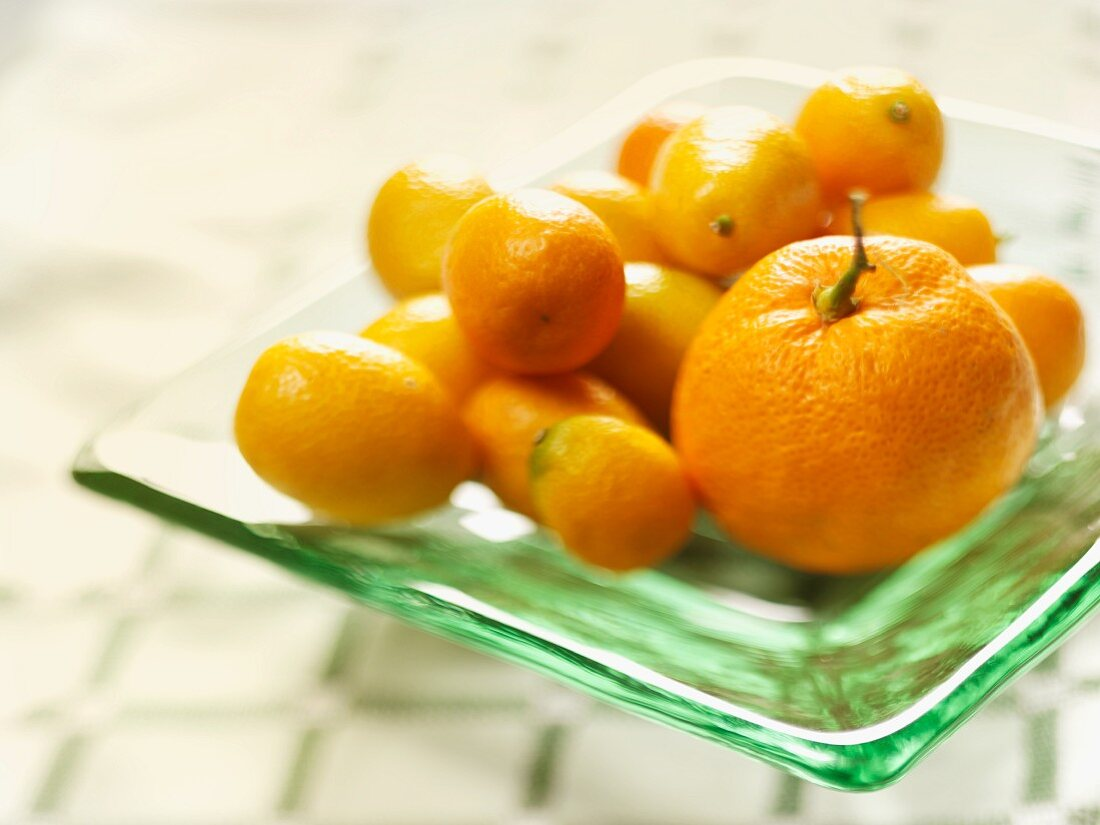 A Tangerine Surrounded by Kumquats on a Glass Plate