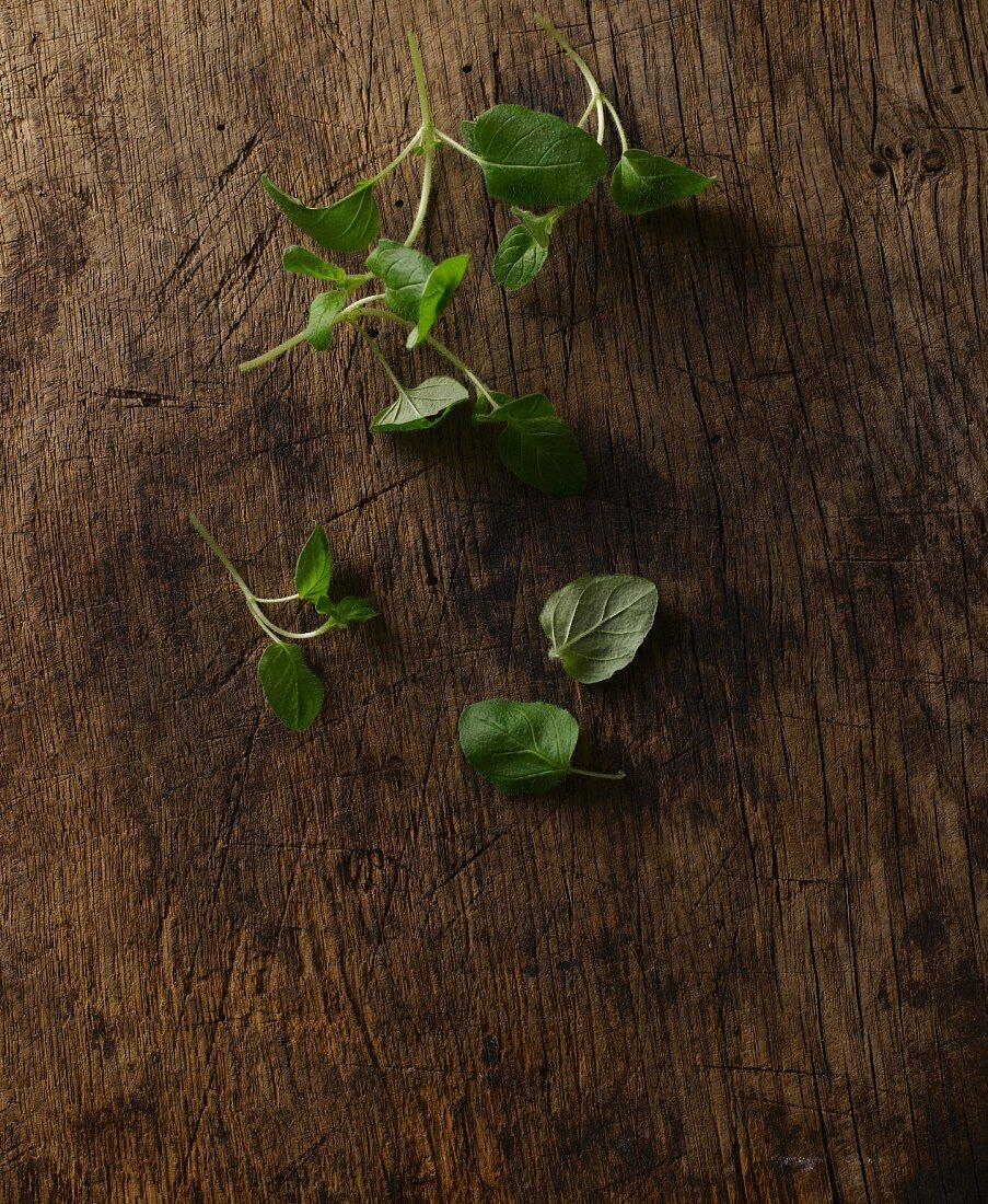 Fresh oregano on a wooden board