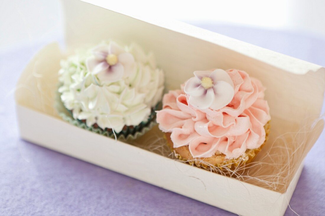 Two cupcakes topped with frosting in a gift box