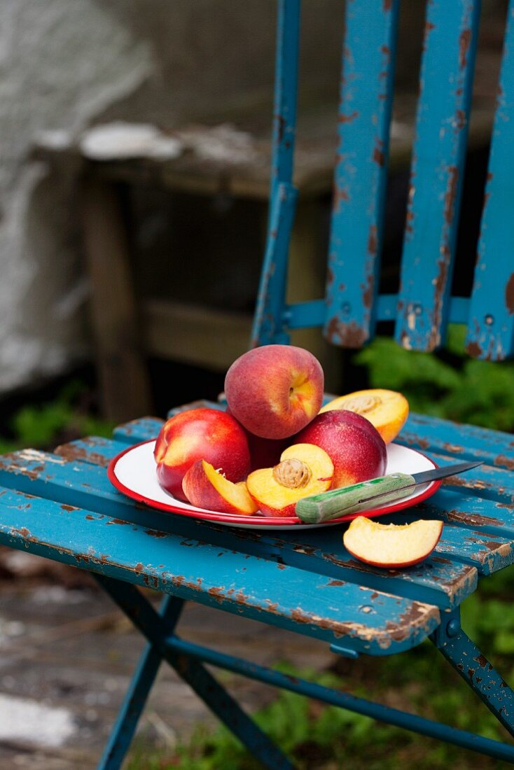 Nectarines and peaches on a plate on a garden chair
