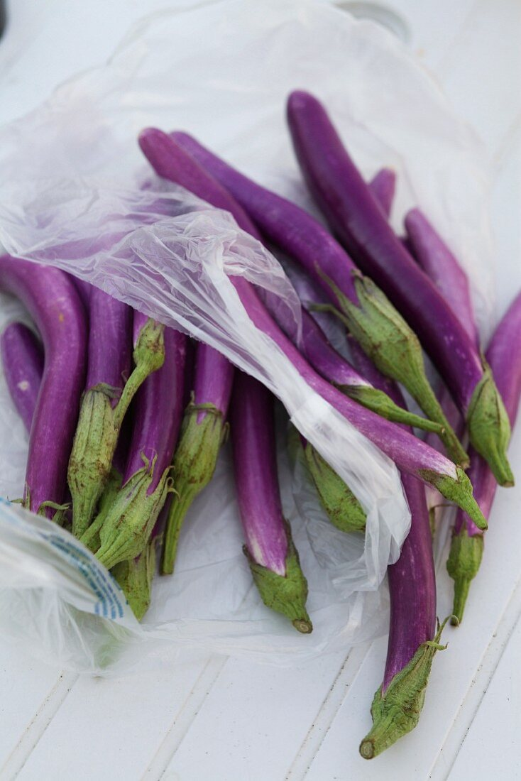 Pingtung Long aubergines with a plastic bag