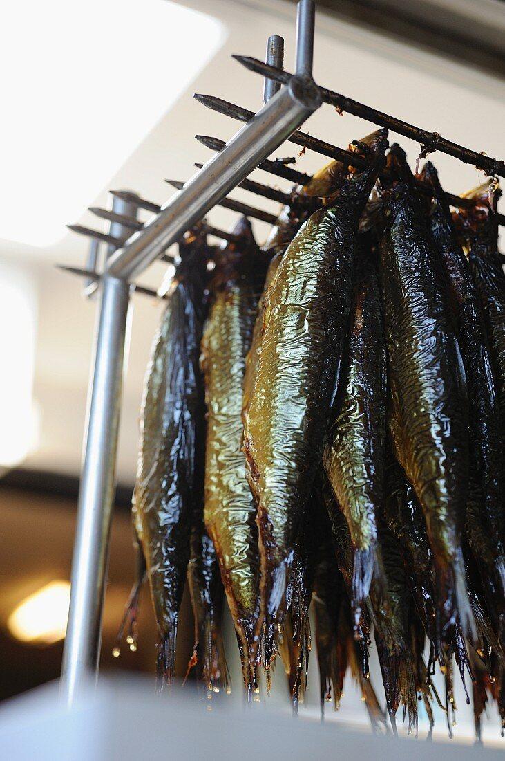 Smoked herrings (Bornholm, Denmark)