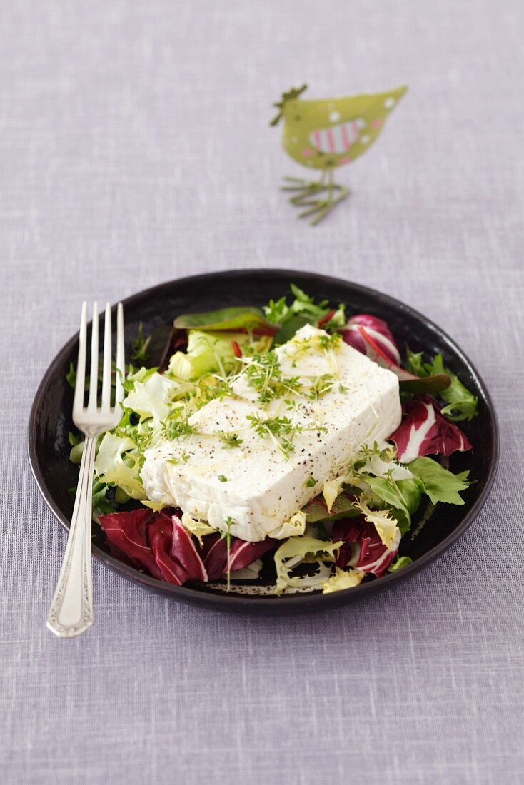 Quark and horseradish terrine with cress for Easter