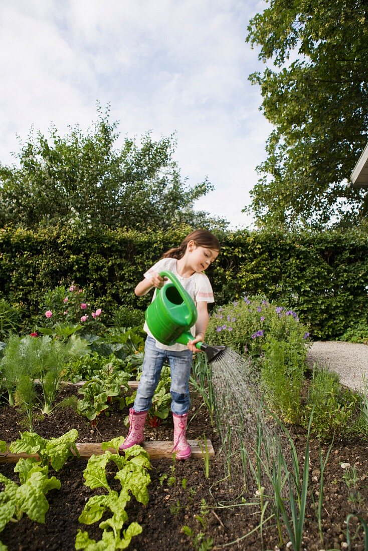 A girl watering plants in a vegetable patch