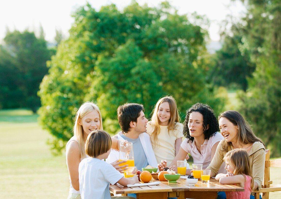 Extended family having picnic