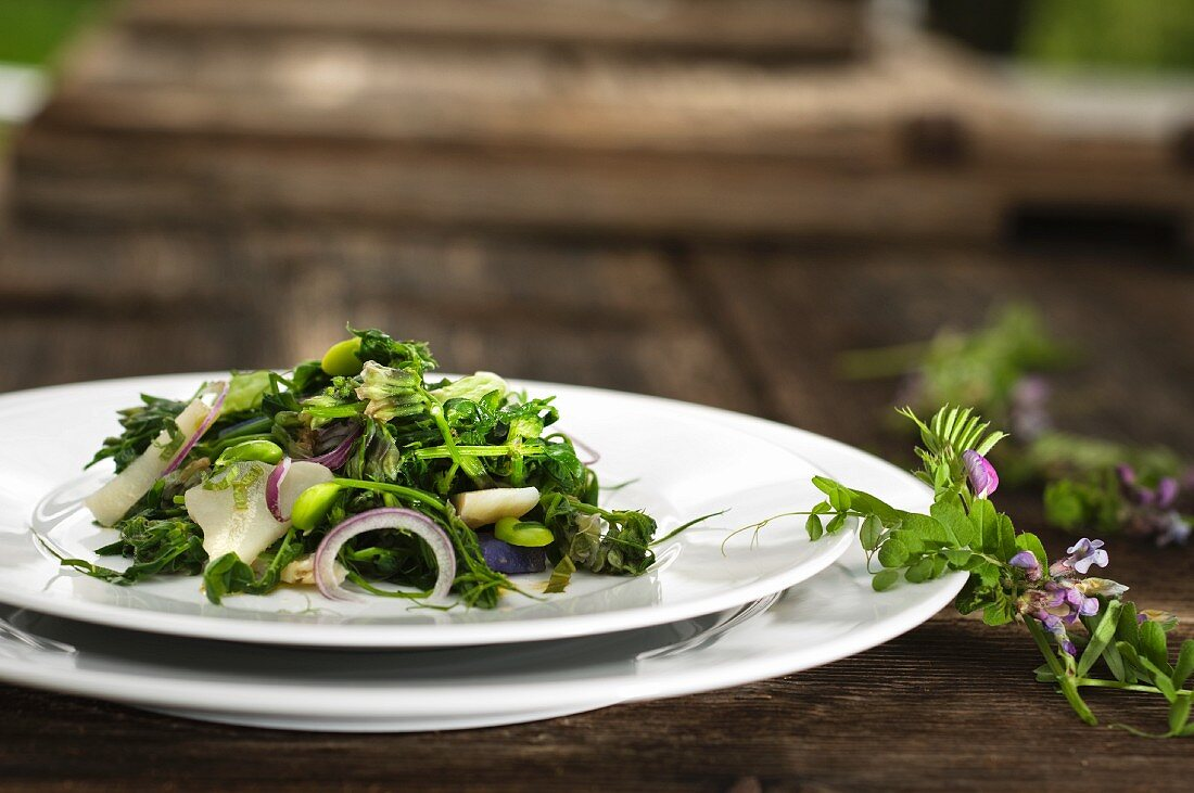 Vetches salad with fresh broad beans and Jerusalem artichokes