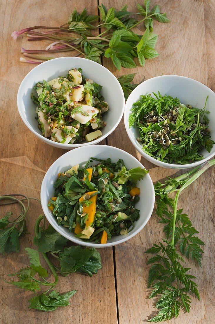 Knoblauchrauke mit Kürbis und Linsensprossen, Kartoffelsalat mit Giersch, Belugalinsen mit Wiesenkerbel