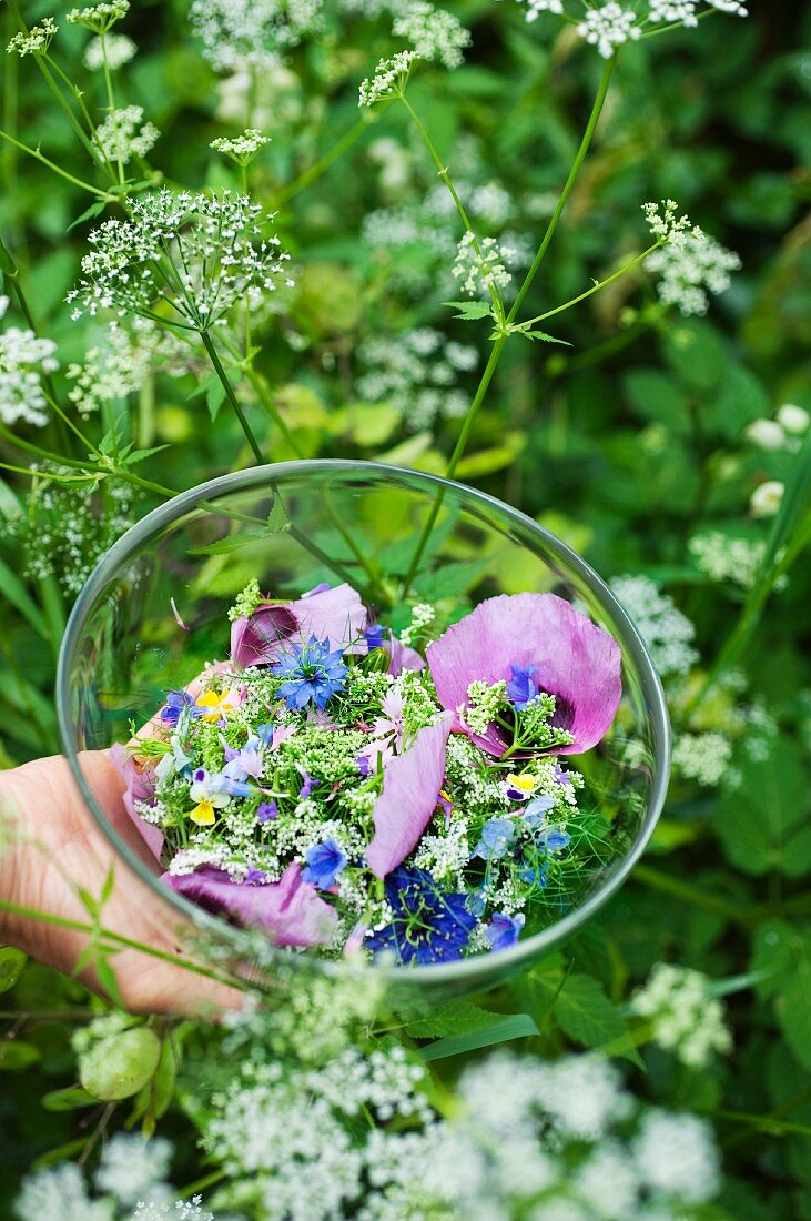 Wedding salad with edible flowers and ground elder buds