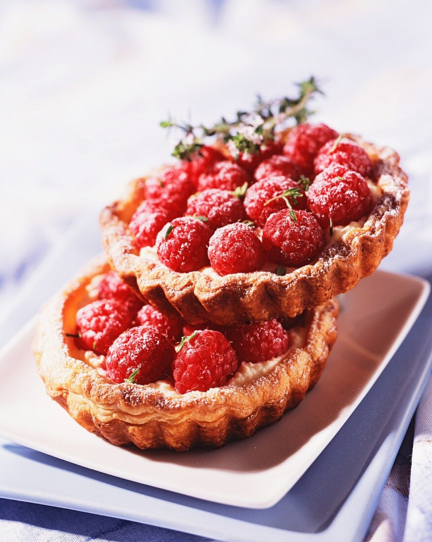 Two raspberry tartlets