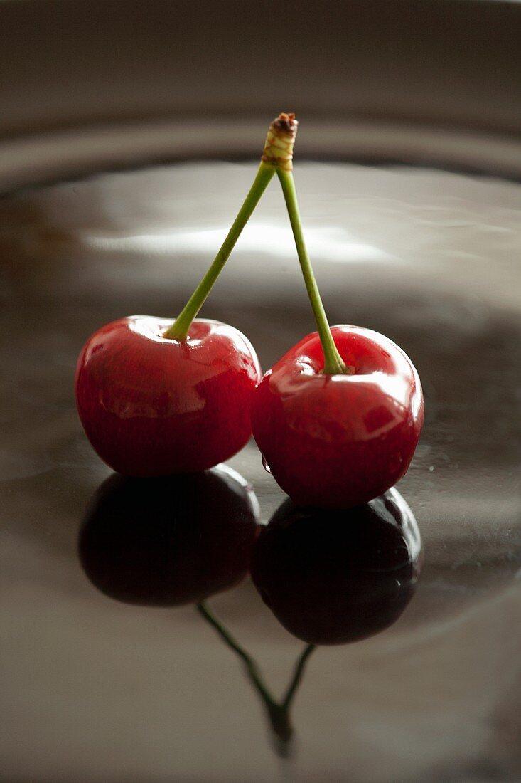 Pair of cherries