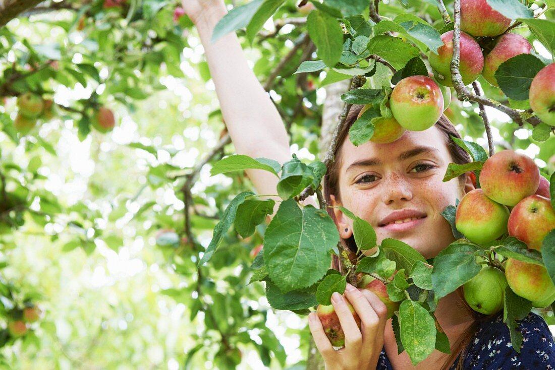 Smiling girl playing in fruit tree
