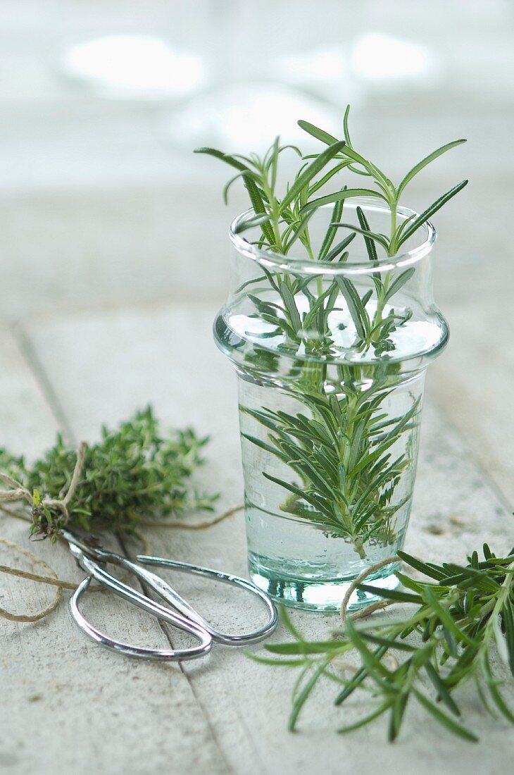 Fresh rosemary in a glass with fresh thyme on a wooden surface in the background