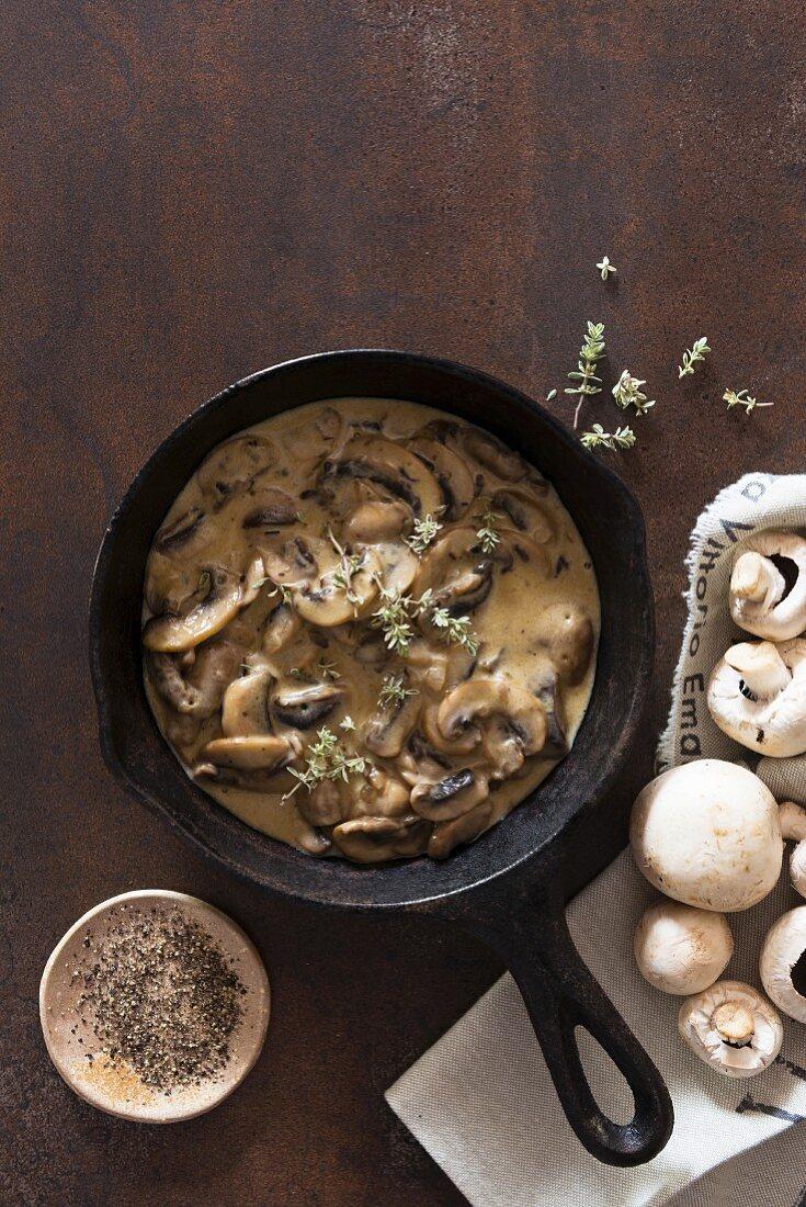 Mushroom sauce and fresh mushrooms