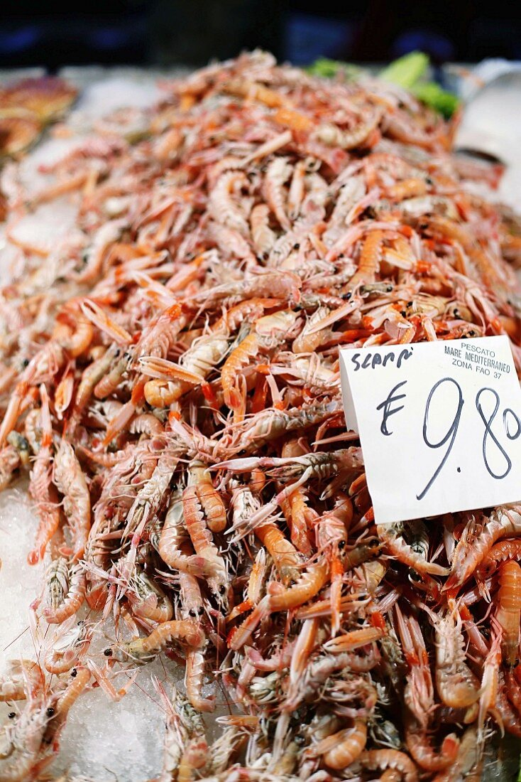 Scampi at a fish market in Venice